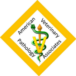 American Veterinary Pathology Associates, PLLC